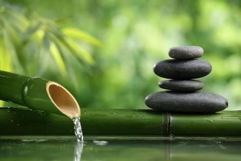 liang-zhang-spa-still-life-with-bamboo-fountain-and-zen-stone_a-g-10361261-14258382